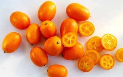 Corfu Traditional Product: Kumquat